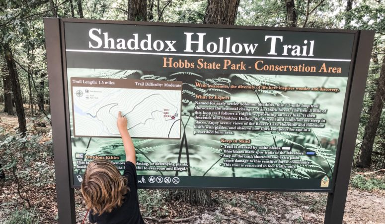 Shaddox Hollow- A Trail Review